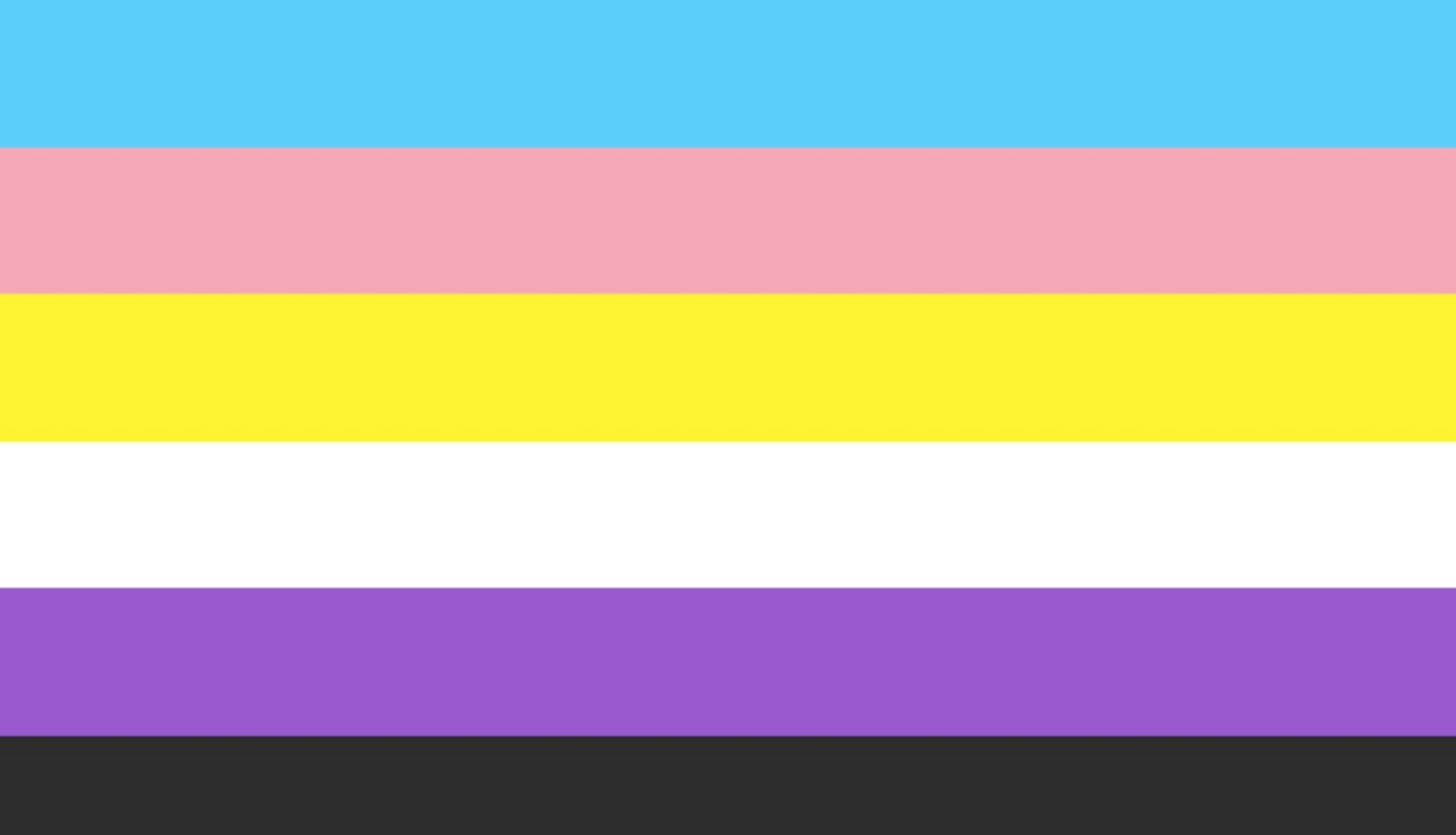 Trans and non-binary flag v2