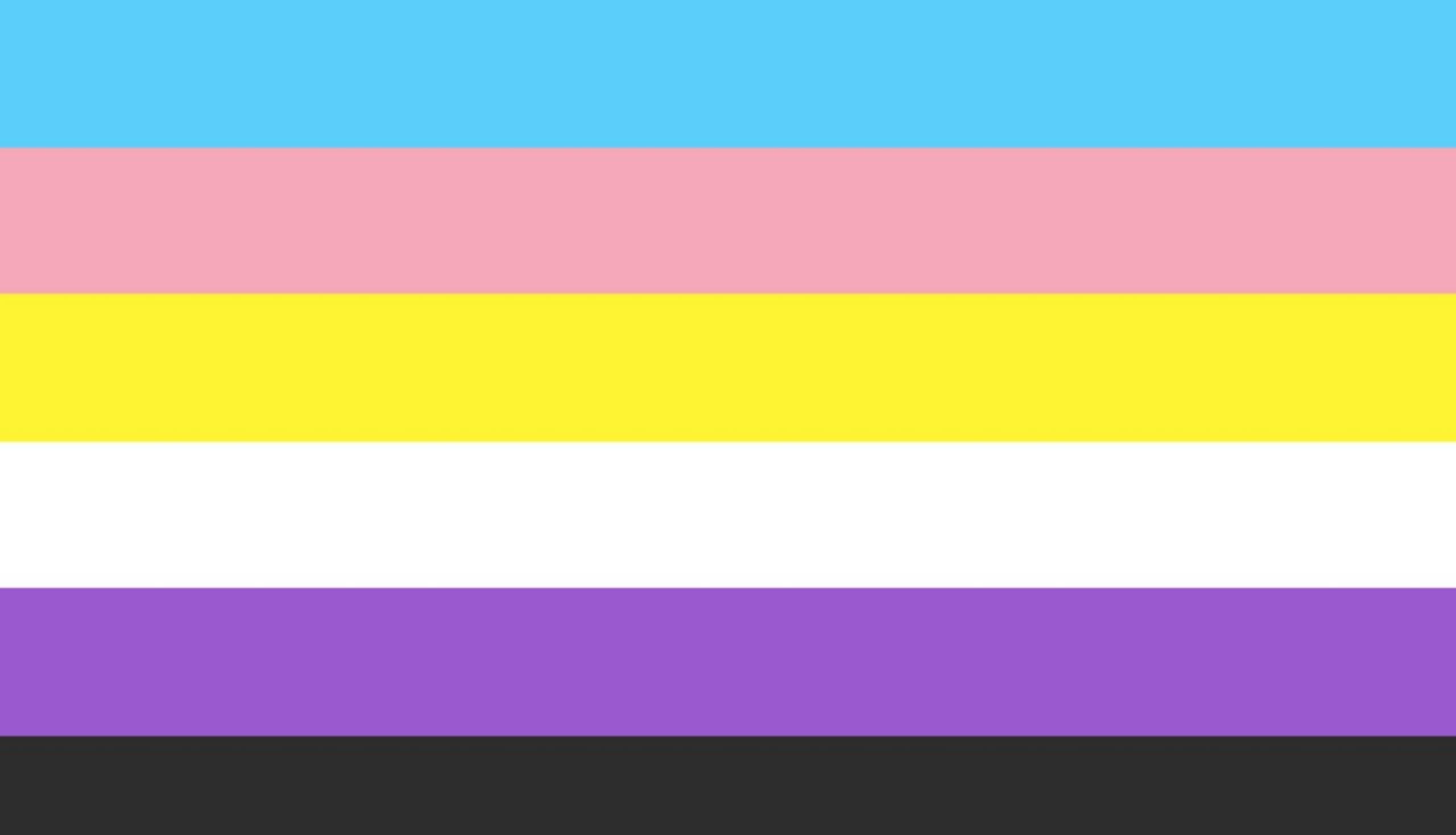Trans and non-binary flag v2